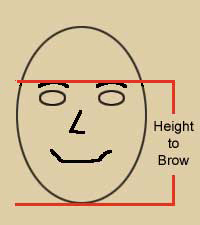 Height to Brow
